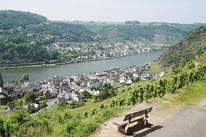 uitzicht over een rivier tijdens nrs autorecreatie moezel en sure reis